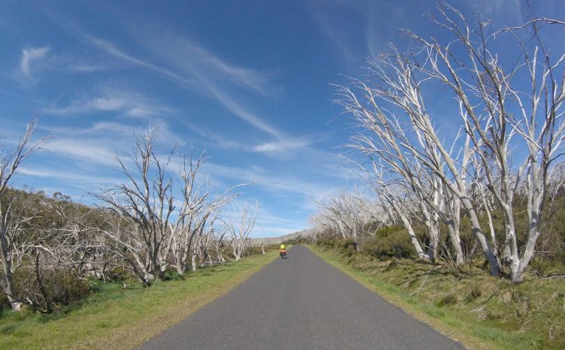 bike-trip-mountain-ash